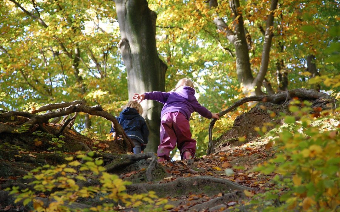 Freie Plätze in unseren Waldspielgruppen!